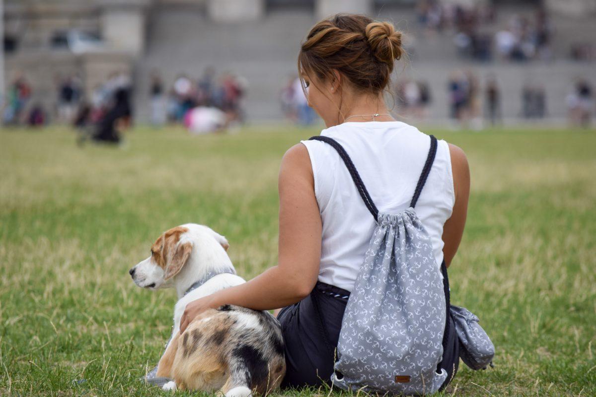 Großstadt mit Hund – Für uns persönlich eine Reise wert!